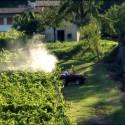 Produttore francese multato per contrabbando di pesticidi illegali
