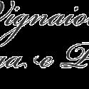 Vignaioli di Langa e Piemonte