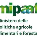 MIPAAF e AIS: Convegno sul Nuovo Testo Unico sul Vino