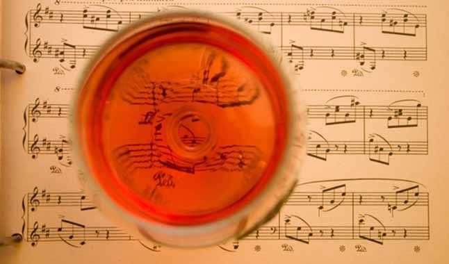 """Abbinare musica e vino? ci pensa il """"sound sommelier"""""""