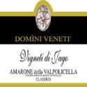 Domini Veneti Amarone Vigneti di Jago 2007
