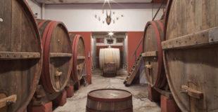 Bucci Verdicchio dei castelli di Jesi Ris. 2017 di Villa Bucci